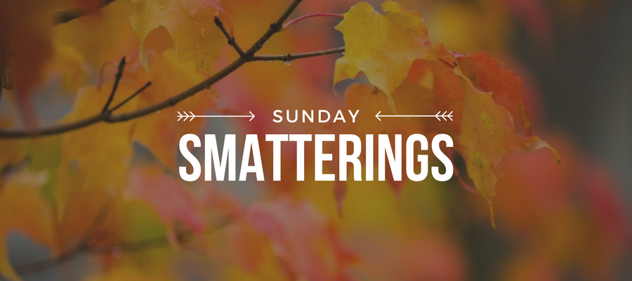 Sunday Smatterings 11.5.2017
