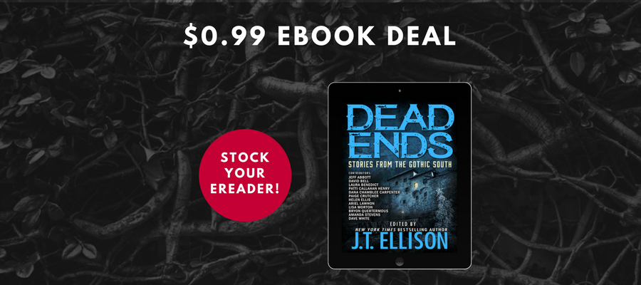 DEAD ENDS ebook is only $0.99!