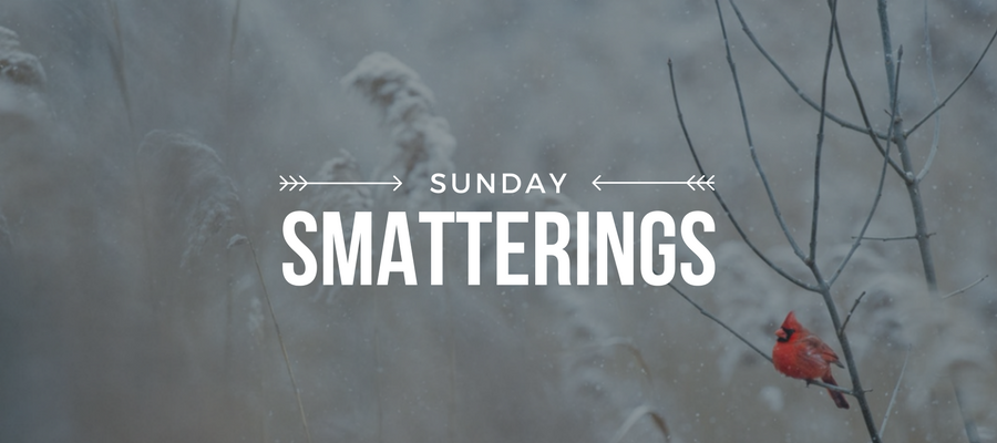 Sunday Smatterings 1.14.18.png