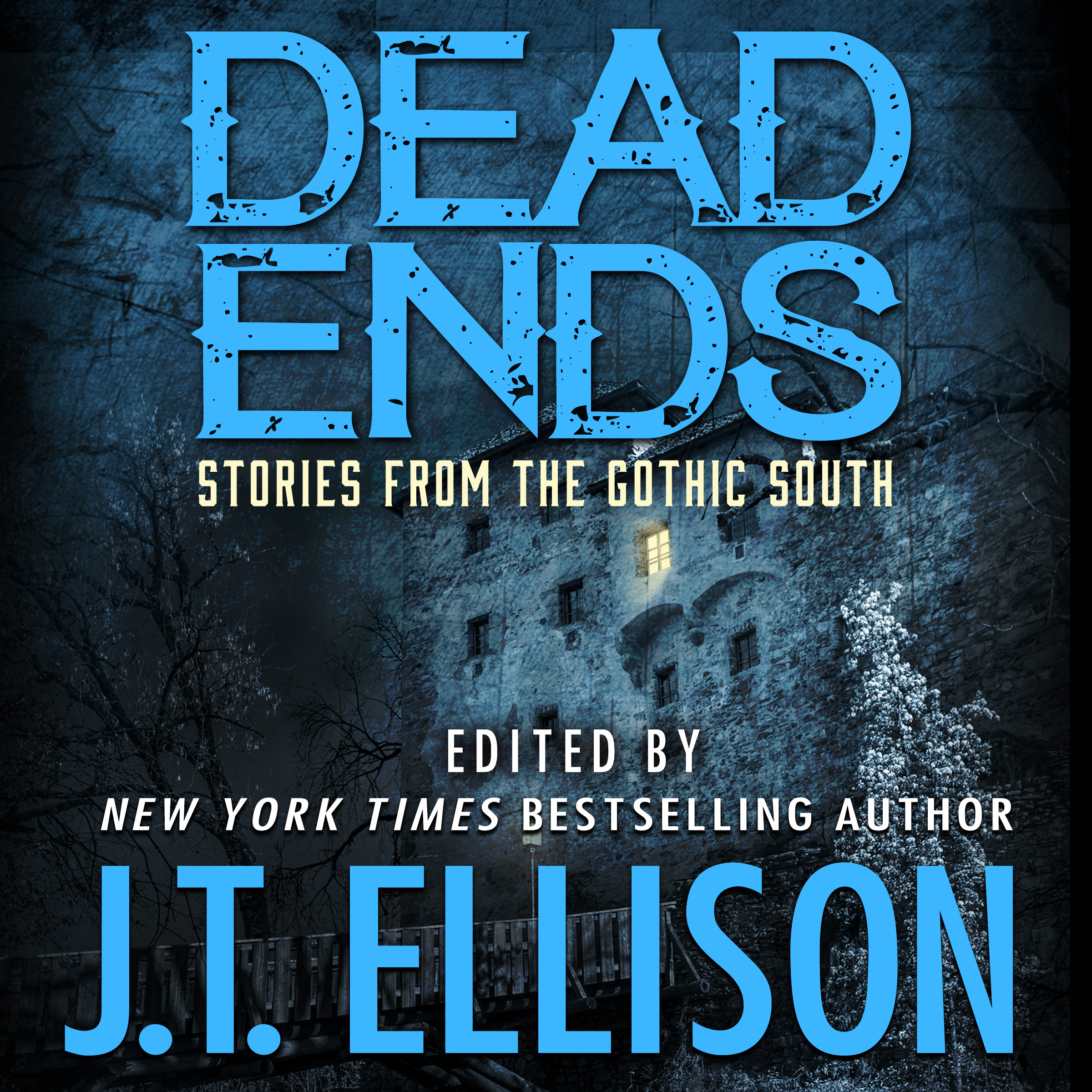 DEAD ENDS audiobook