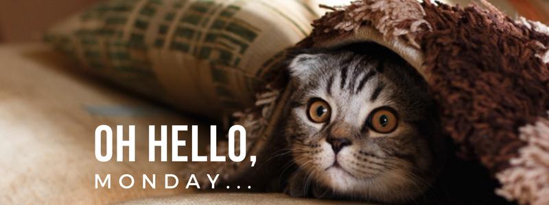 Oh Hello, Monday...