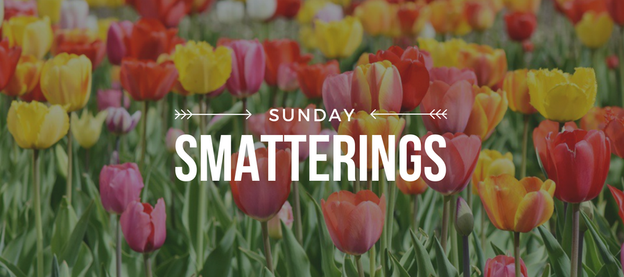 Sunday Smatterings 5.28.18.png