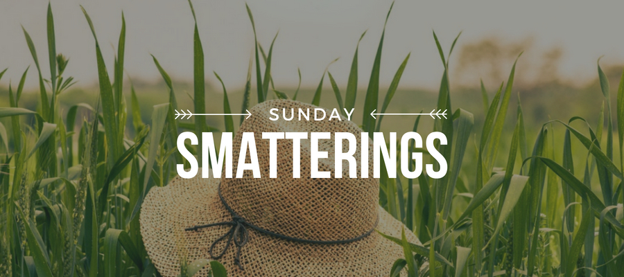 Smatterings - August 12.jpg