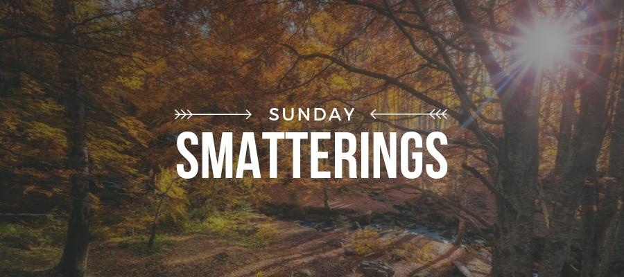 Smatterings - November 11.jpg
