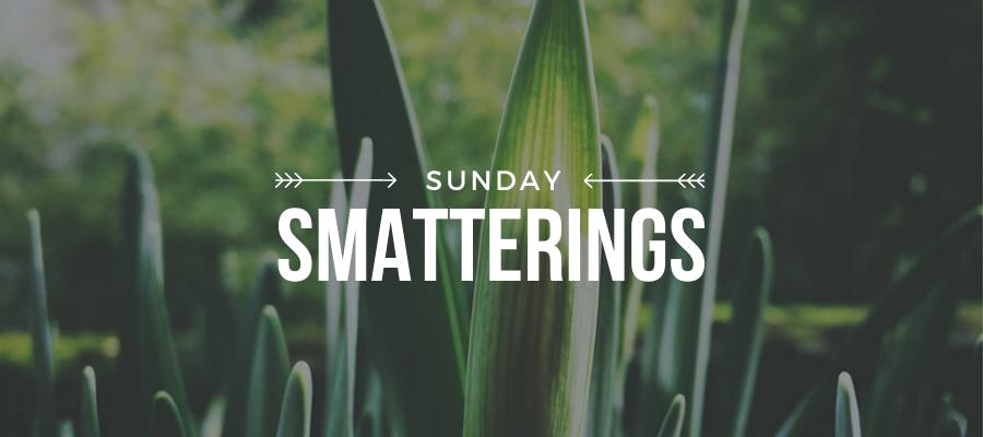 Smatterings - May 17.png