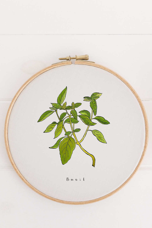 GreenmarrowStudio_Basil