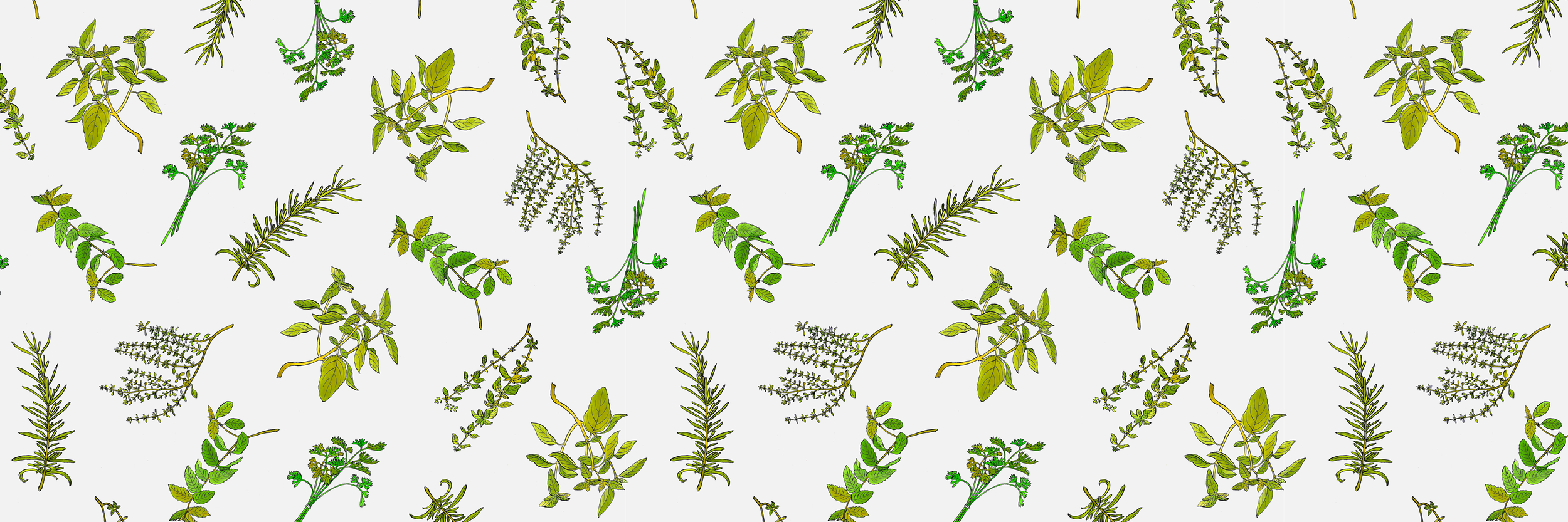 GreenmarrowStudio_Herbs_Pattern.png
