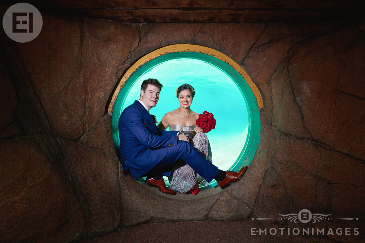 wedding-photography-london-zoo_008.JPG