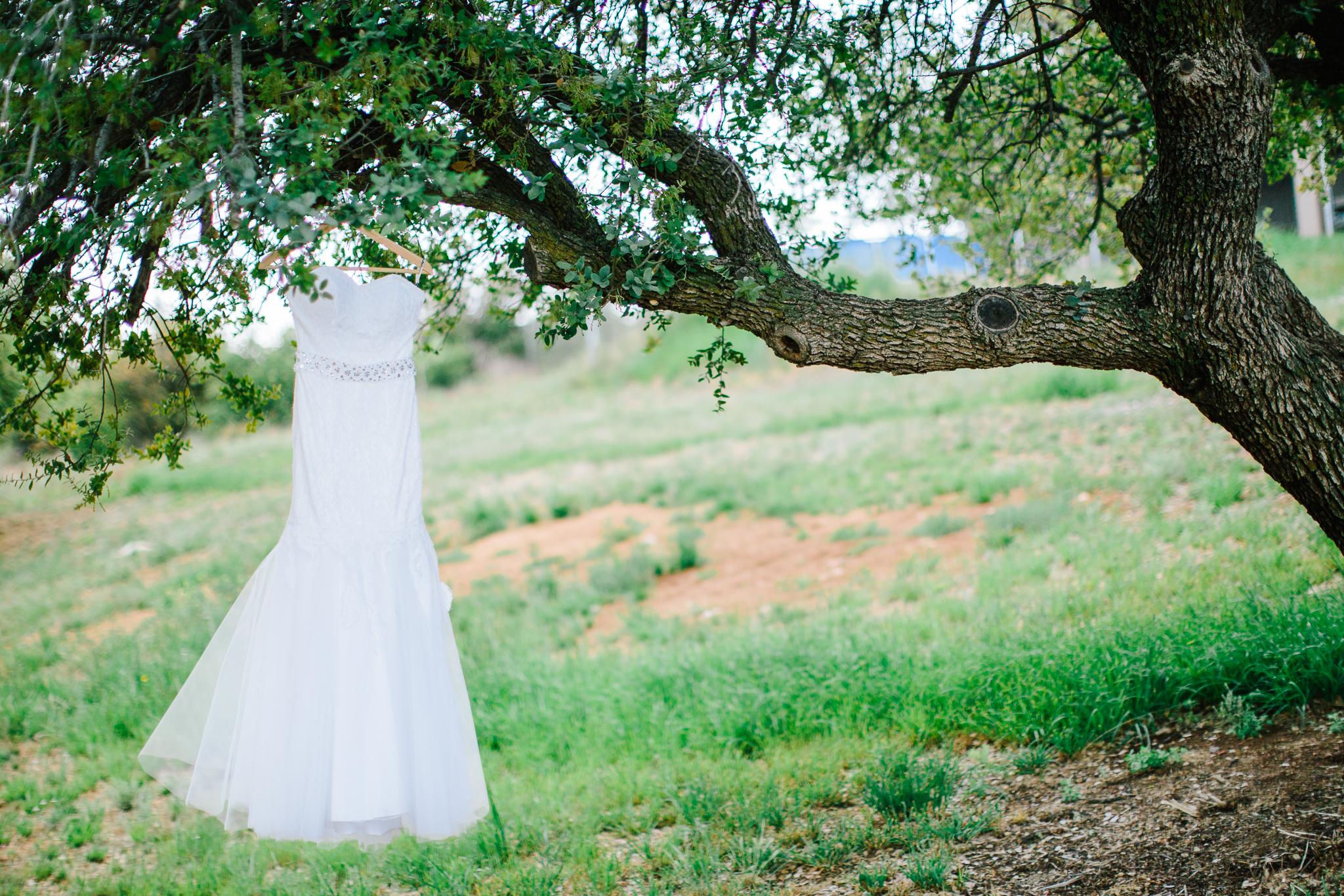Prescott-Wedding-Photographer-1282.jpg