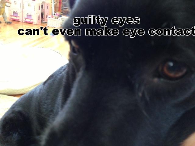guilty eyes.png