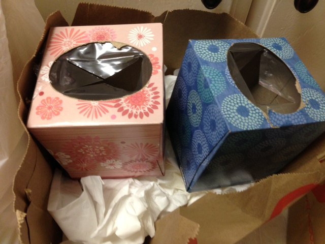 tissues.png