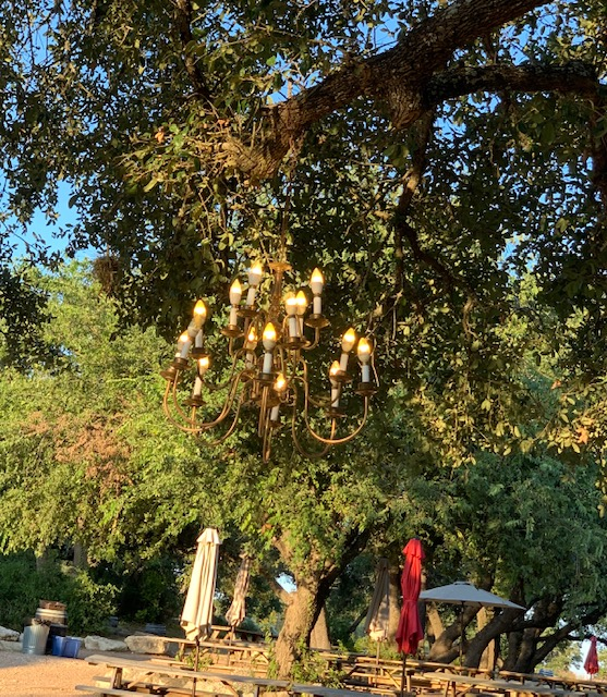 chandeliers in trees is so magical