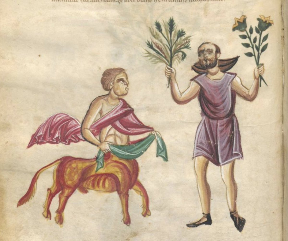 Chiron + Artemisia from a 13th century herbal