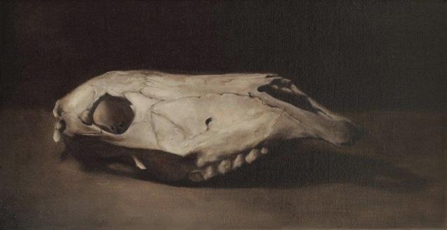 Doe Skull