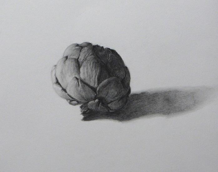 Artichaut-Morte--graphite-on-paper-8x10-2010.jpg