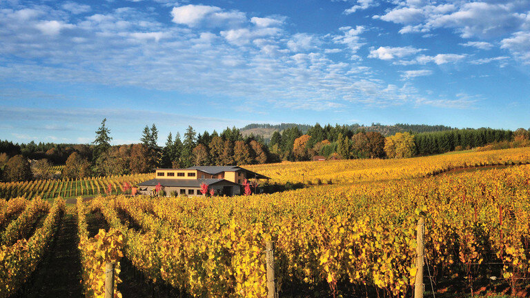 Anne Amie's Pinot Noir Willamette Valley Two Estates 2017 score 91 points in Wine Spectator and named among the  9 Top-Rated Oregon Pinot Noirs for fall .