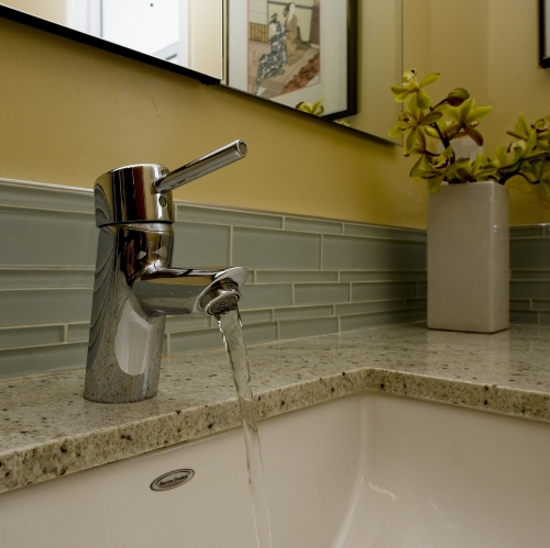 Richmond Heights Modern Hall Bath