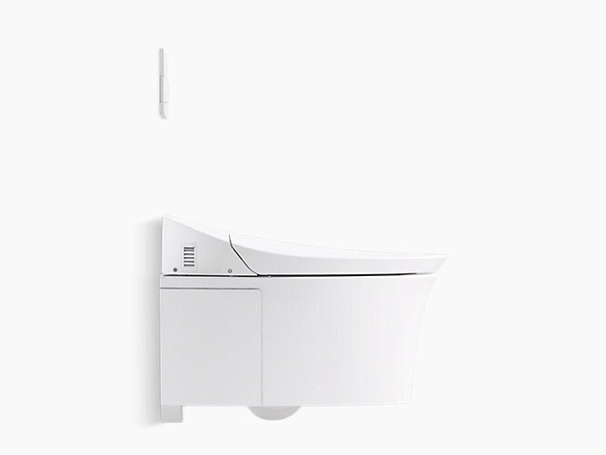 This is a beautiful, highly functioning, wall-mount toilet