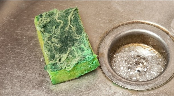 This sponge is gross - A sponge that is this old and dirty will be harbouring a lot of germs.