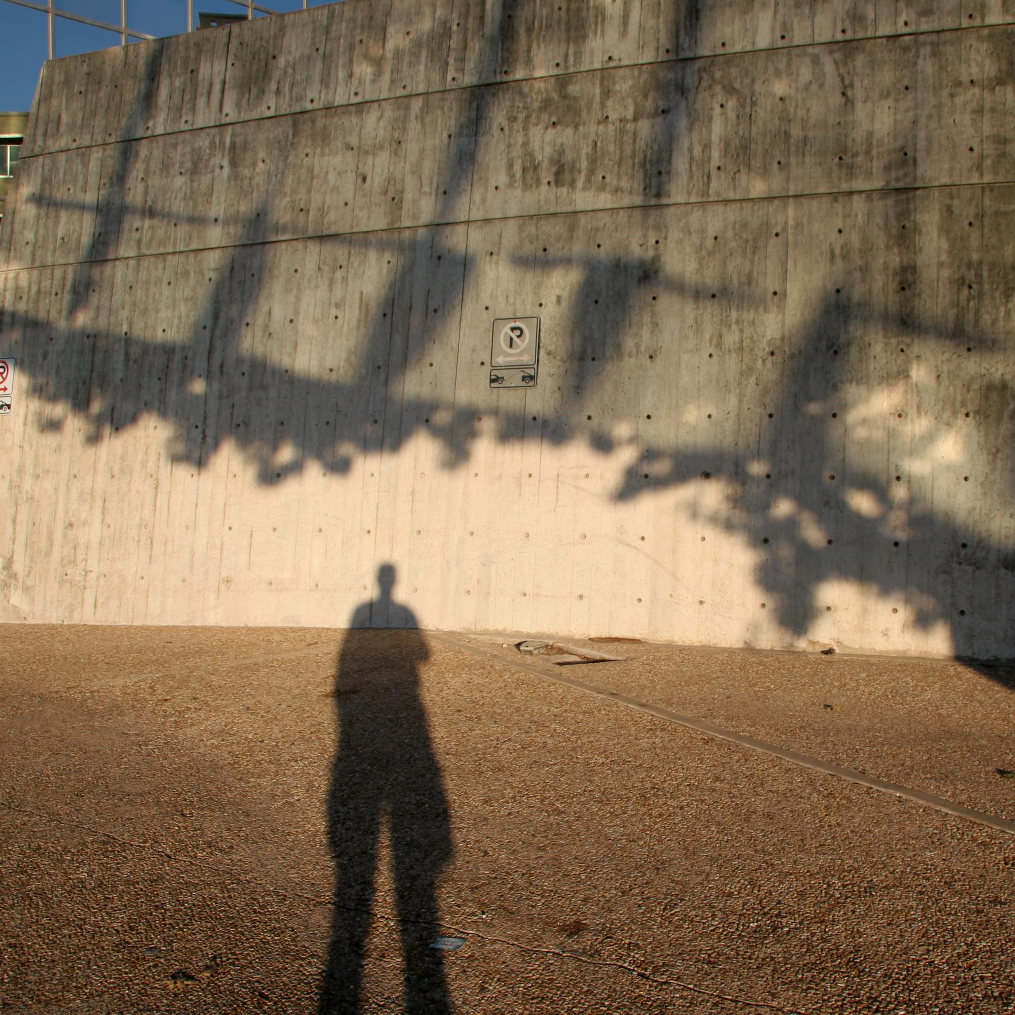 Bank Shadow