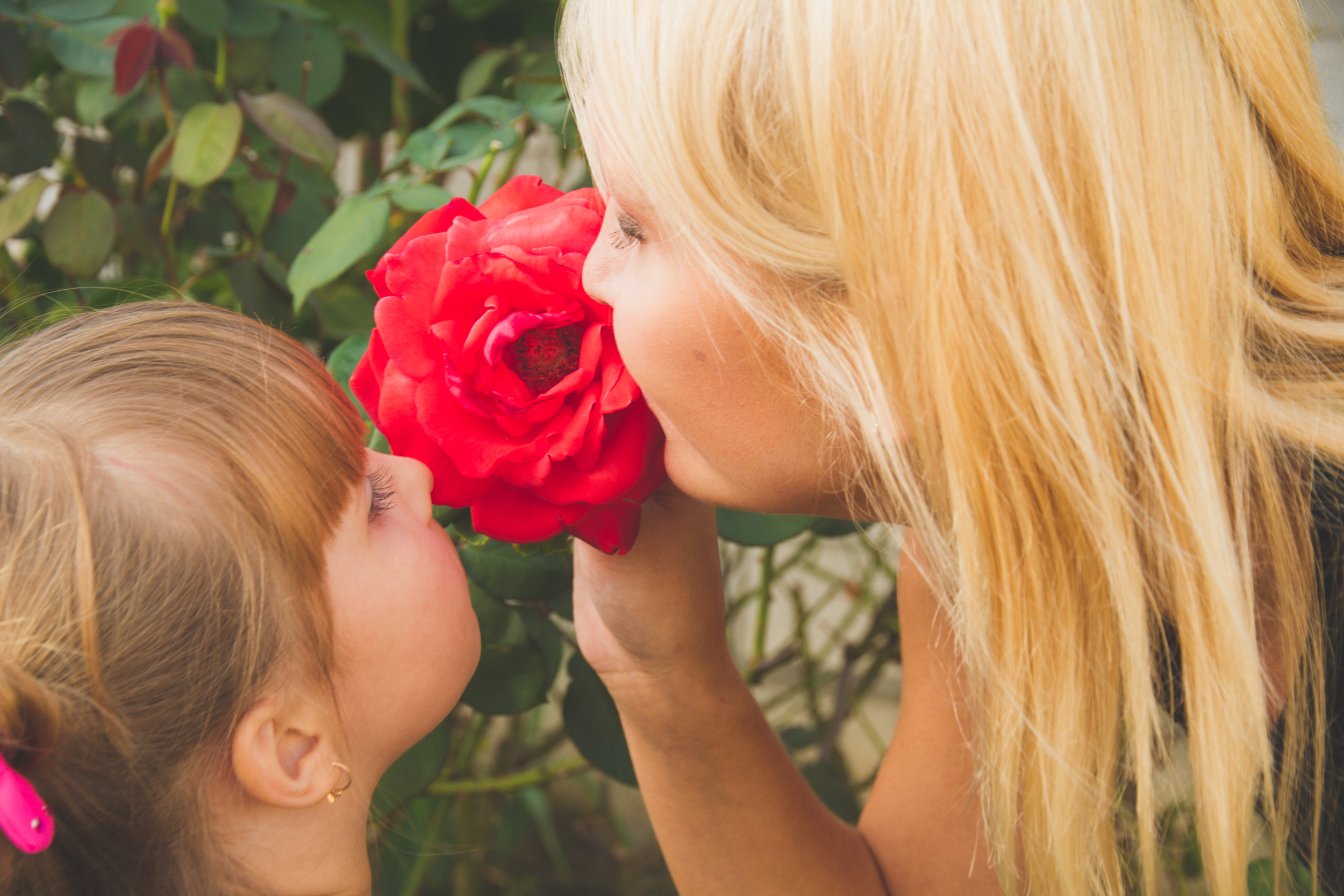 Time to appreciate family and nature blooming