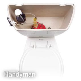 toiletperform1.JPG