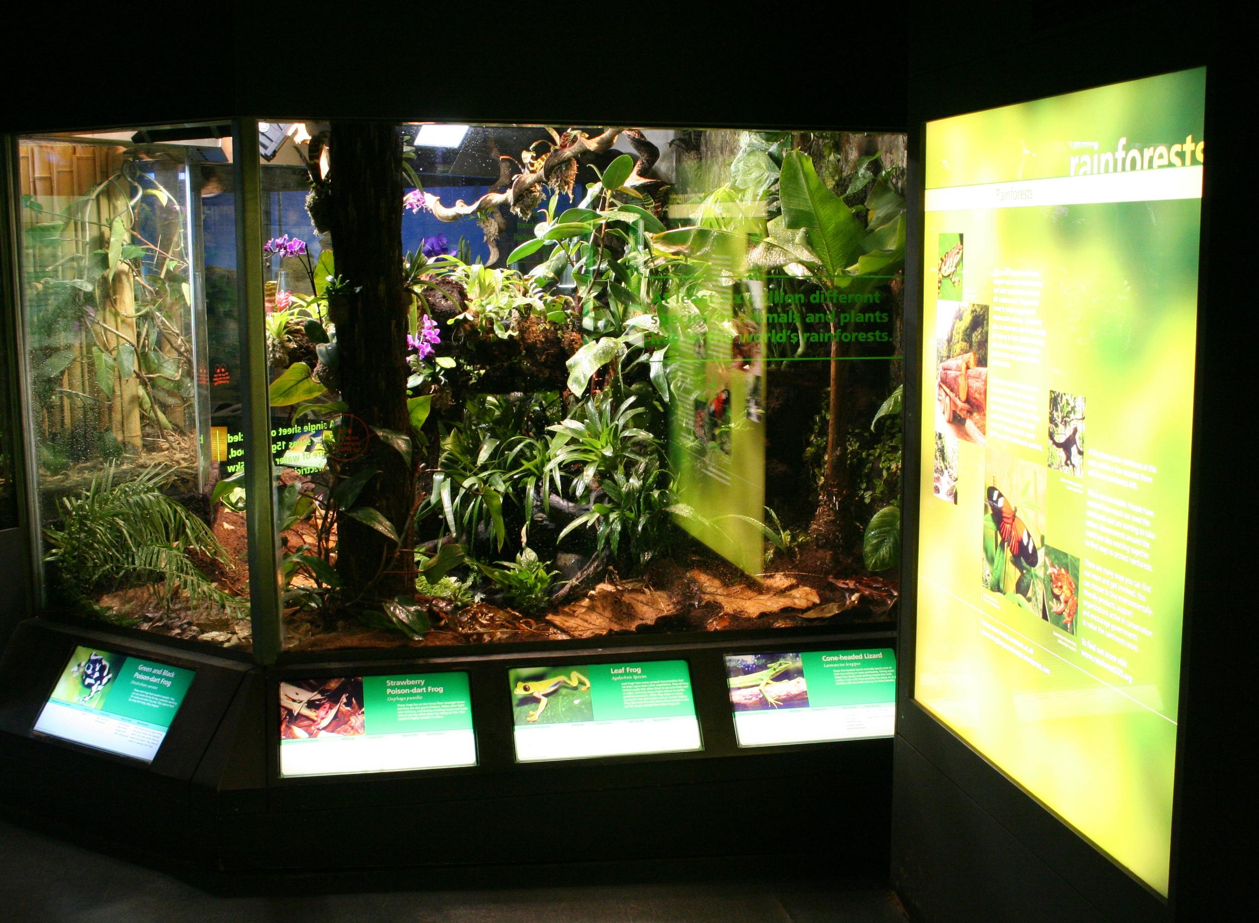 The Vivarium at Manchester Museum