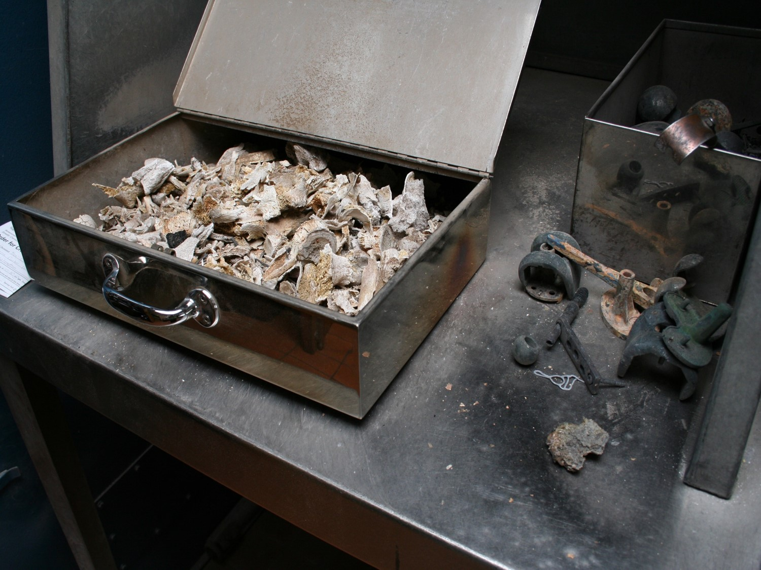 Laura Peters, Photograph of charred bones and hip replacement joints following cremation from the  Survivors of the Fire  series, 2011.