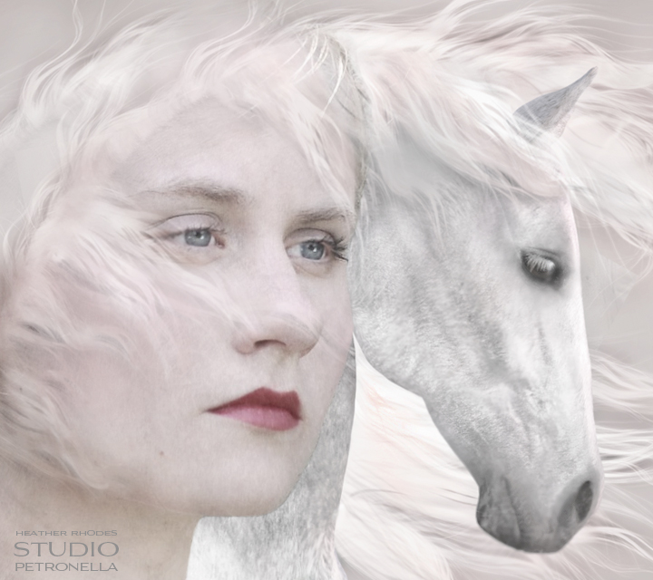 my whisper wind mare  © 2013 heather rhodes studio petronella all rights reserved neweb.jpg