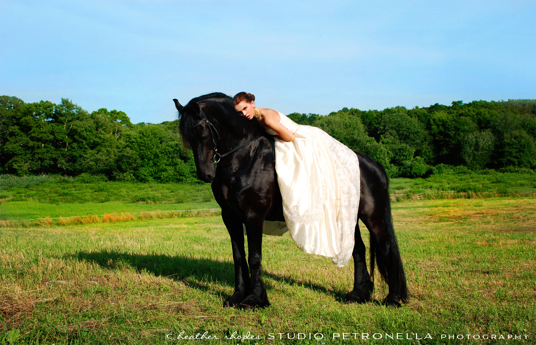 %22a girl and her horse%22 15 © 2015 heather rhodes studio petronella all rights reserved.jpg