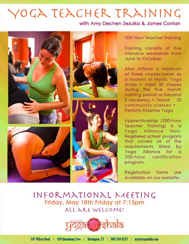 mys+teacher+training+poster+2012+low+rez+for+proof.jpg