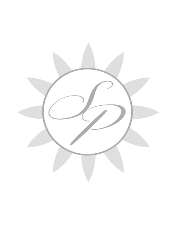 sp logo for portfolio copy.jpg