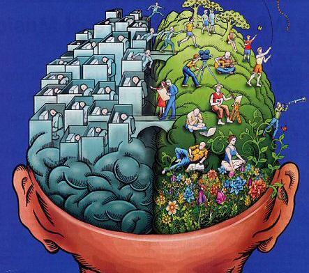 14left-brain-right-brain.jpg