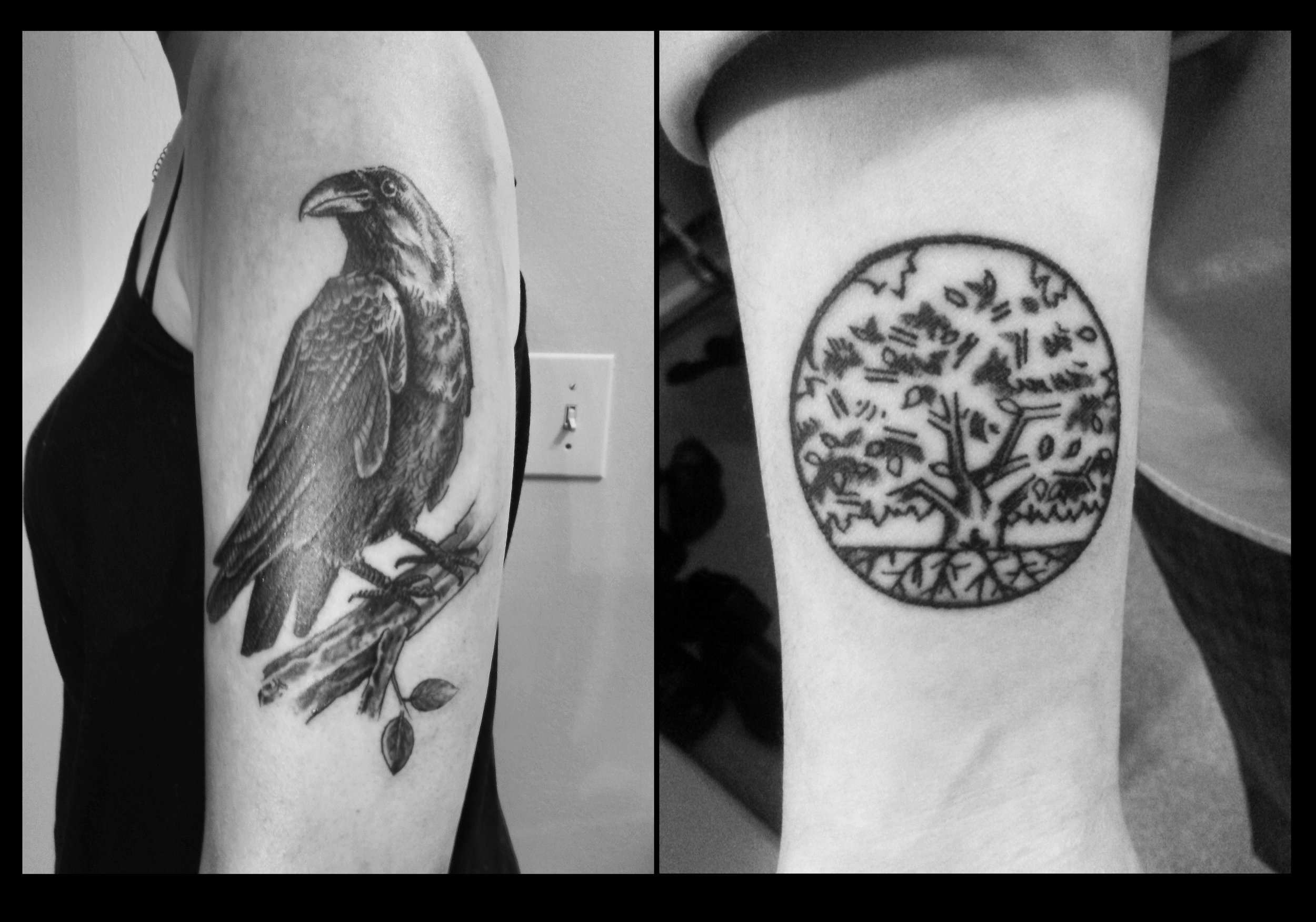 the raven and the tree of life