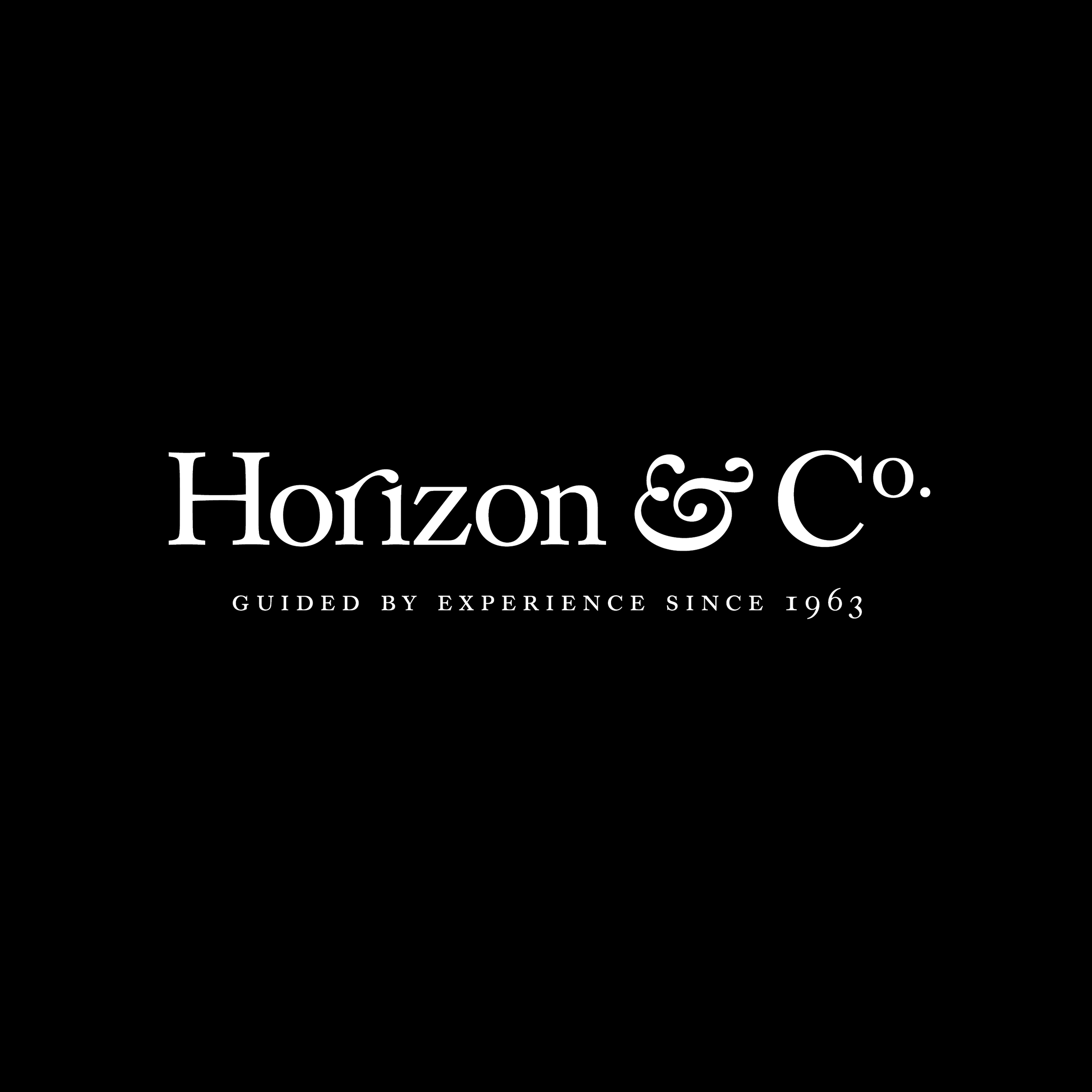 Horizon&Co_Logo_REV.jpg
