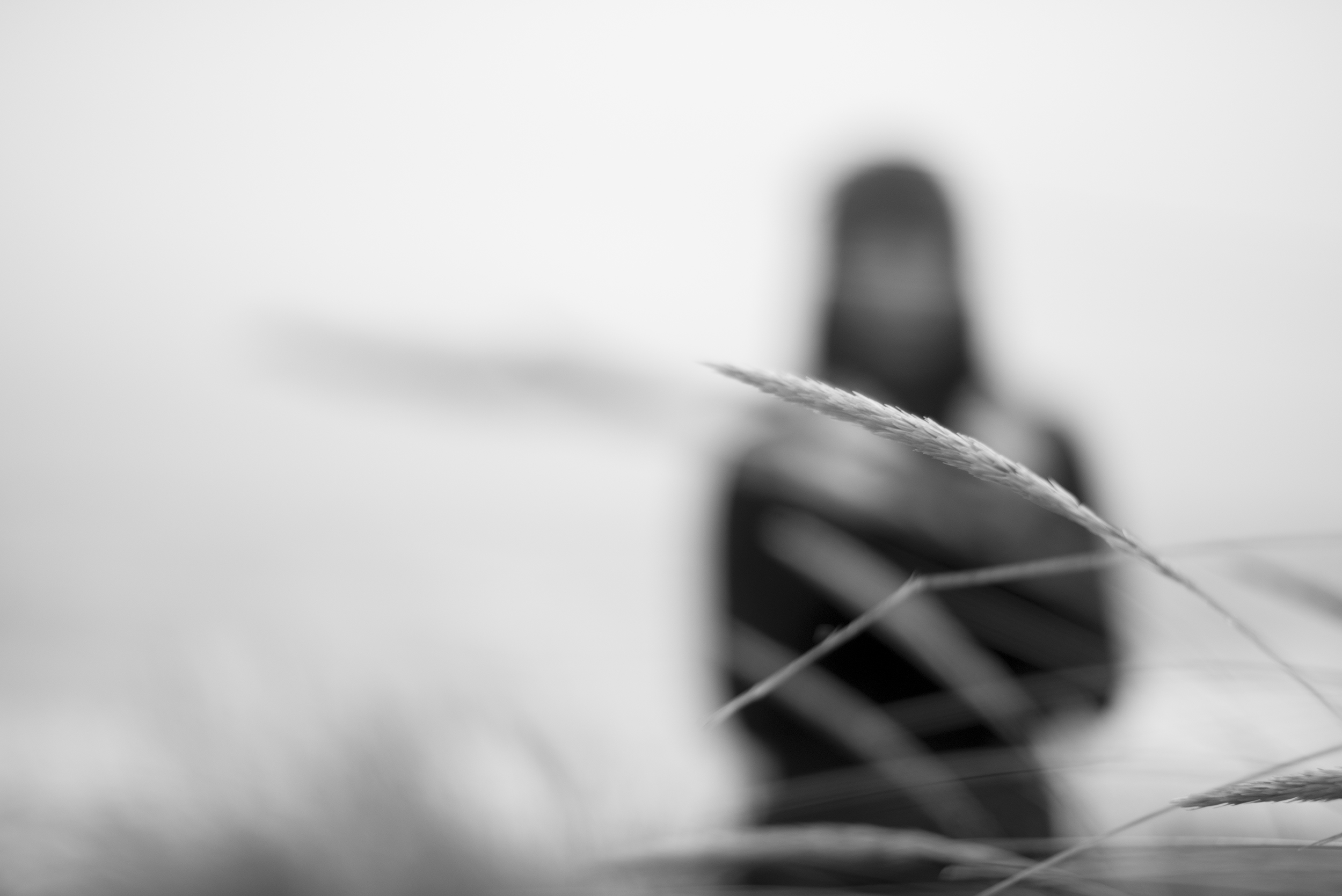 Sean Conroy Photographer.jpg