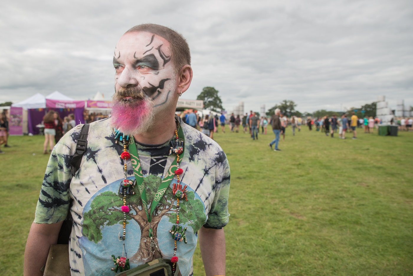Electric Picnic 2017 photos