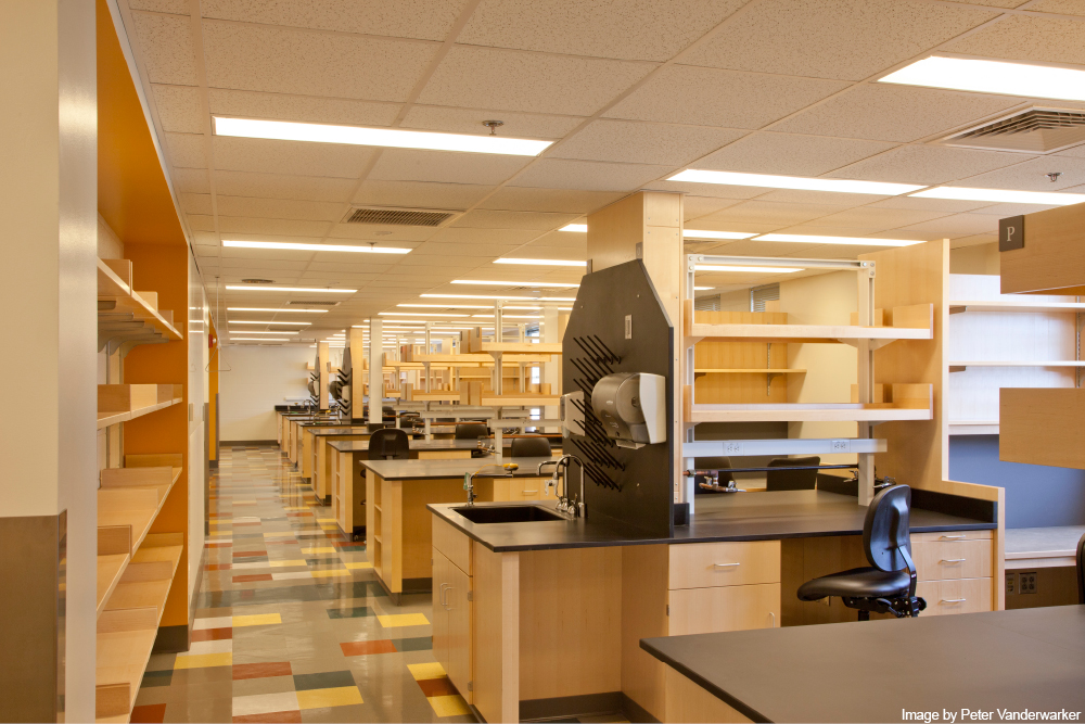 MGH Jackson 7 Lab4.jpg
