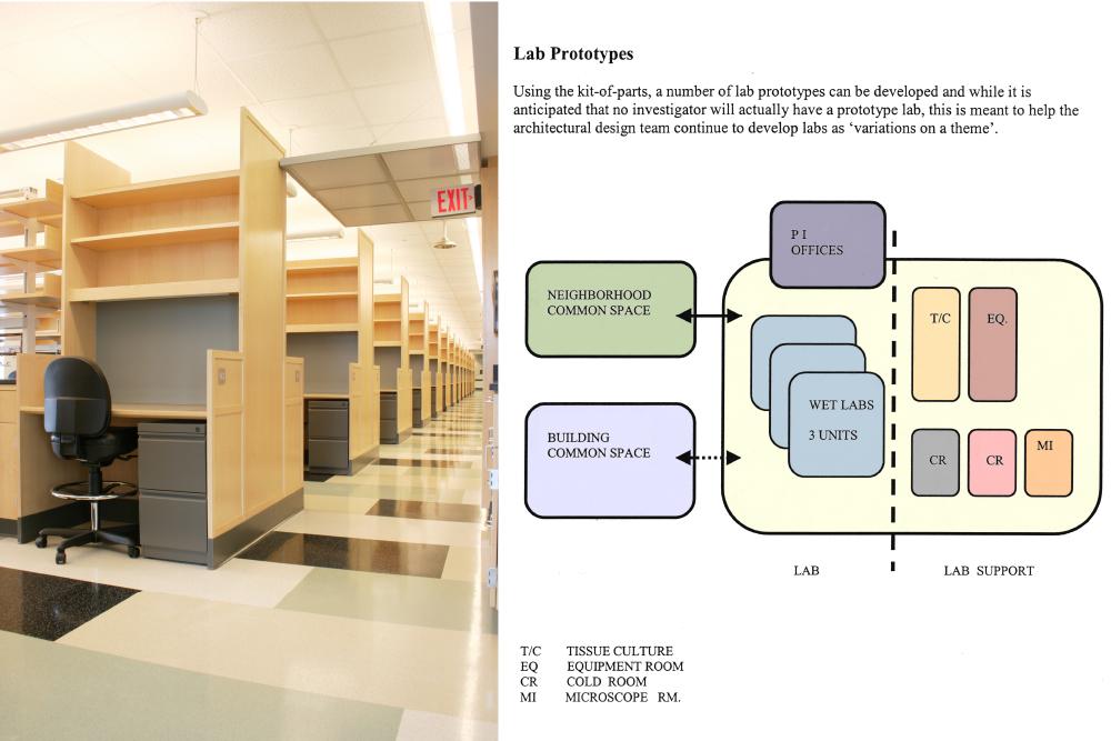 MGH Simches Research-CRP17.jpg