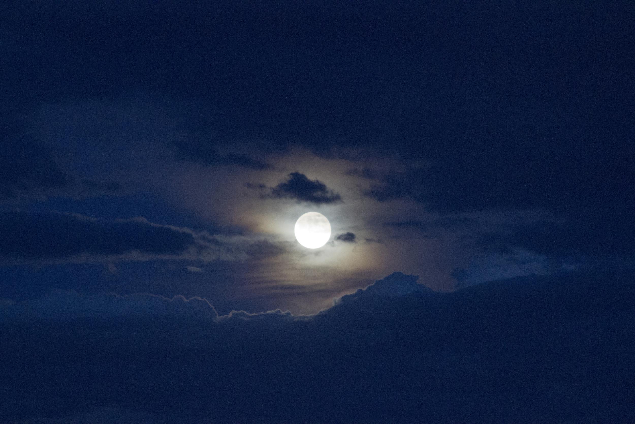 Moonlight fell on lovers' skin