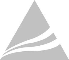 suntour_triangle_gray230.jpg