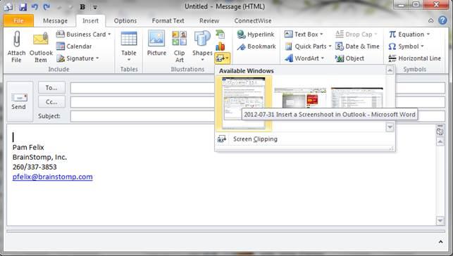 InsertScreenShotEmail-02.png