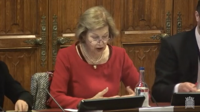 Baronness Nicholson of Winterbourne chairs the House of Lords Select Committee on Sexual Violence in Conflict. AIDS-Free World co-director Paula Donovan testified by video conference.