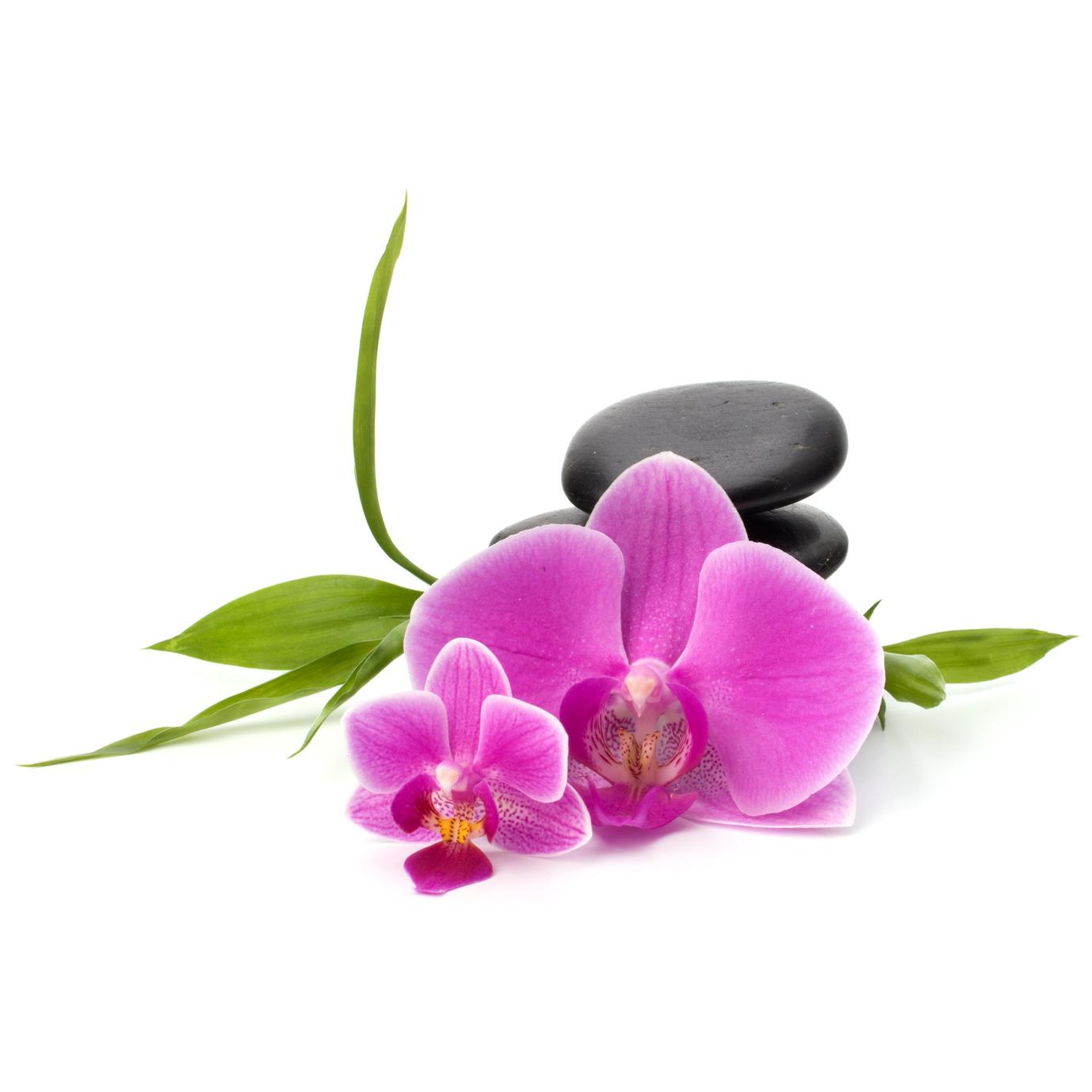 orkidstones.jpg