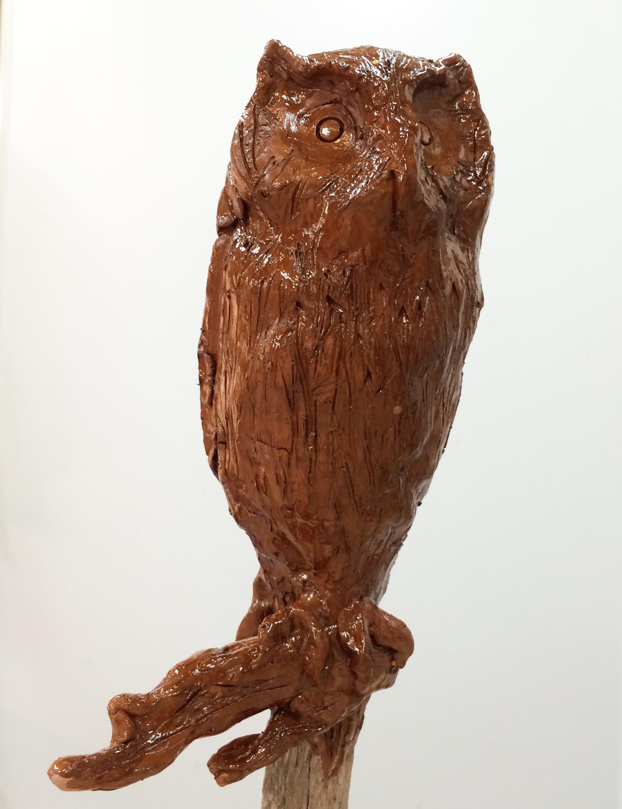 Aarons OWL.jpg