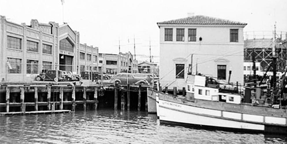 Portrait In Black -  Fisherman's Wharf