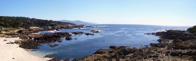 Vertigo -  At The Coast