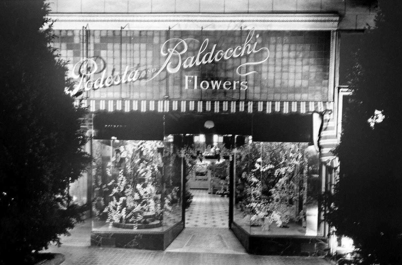 Vertigo - Flower Shop