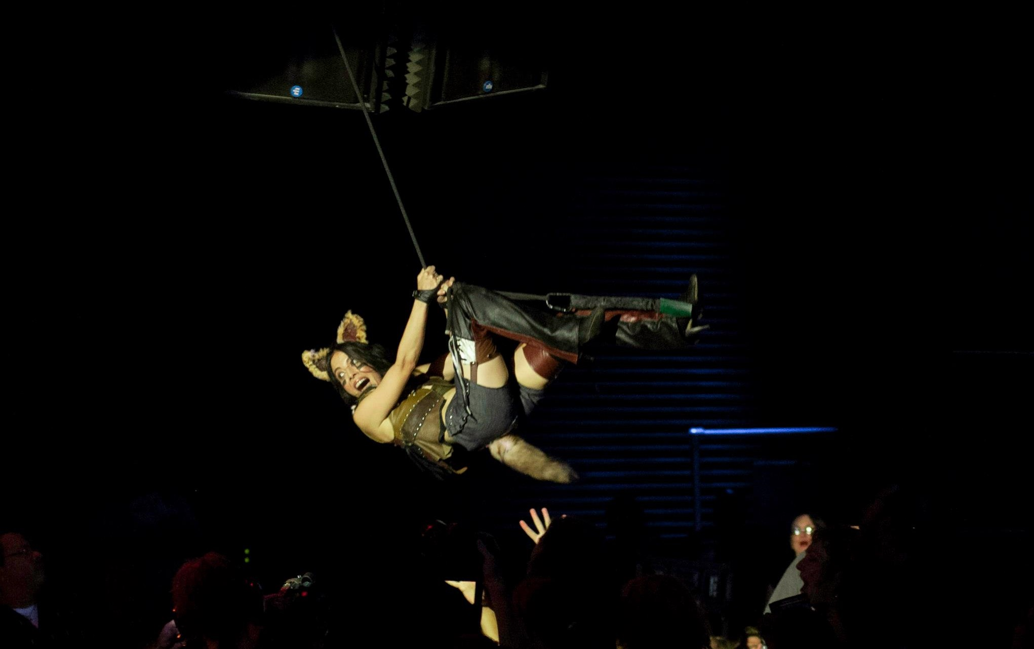 Diamondback Annie - Cat Scratch Fever burlesque - by Todd Scheuerell.jpg