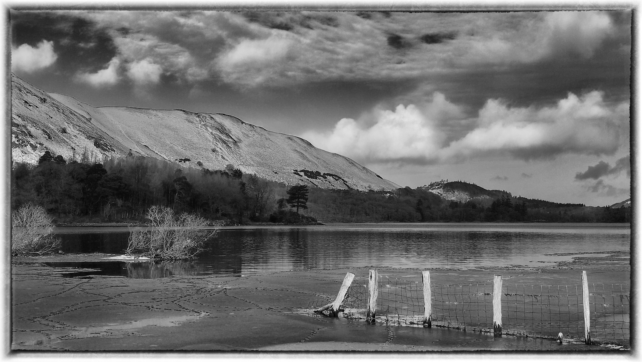 Cat Bells     Great Bay EP-3/25mm